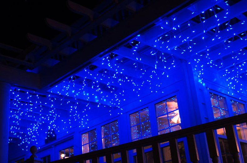 zoo event blue led lighted building