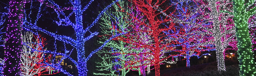 We have all your Commercial Holiday Lighting solutions to help you make sensational displays!